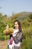 Girl with pumpkin. Royalty Free Stock Image