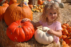 Girl pumpkins Royalty Free Stock Image