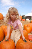 Girl pumpkins 3 Royalty Free Stock Image