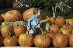 Yeah! Pumpkins! Stock Photography