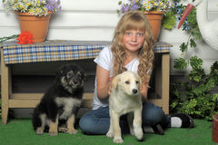 Girl with puppies Stock Photo