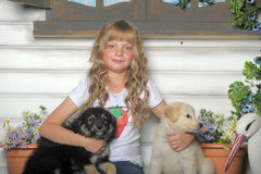 Girl with puppies Stock Image