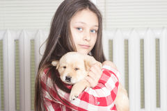 Girl and puppy Royalty Free Stock Photo