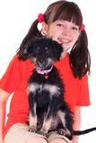 Girl with puppy Stock Image