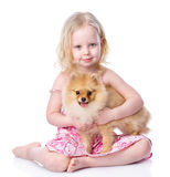 Girl and puppy. looking at camera. Royalty Free Stock Photo