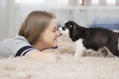 Girl and puppy stock photos