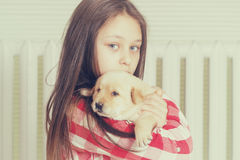 Girl and puppy Stock Images
