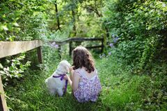 Girl and Puppy Sitting on Green Grass Surrounded With Shrubs during Daytime Royalty Free Stock Image
