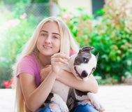 Girl, puppy stafford, smile, close up Royalty Free Stock Photo