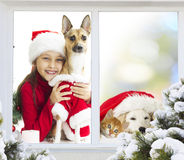 Girl and a puppy waiting for Christmas Stock Photography