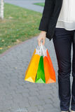 Girl with purchases Stock Photography