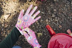 Girl puts gloves to work in the garden stock photography
