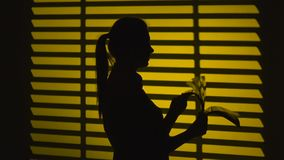 Girl quickly turns the log sheets. Silhouette. Close up. Girl is flipping the journal, young girl in one hand and holding a book in paperback and the second hand stock video footage