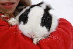 Girl with rabbit Stock Photo