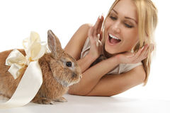 Girl with a rabbit Royalty Free Stock Photography