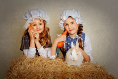 Girl with a rabbit on the hay and a carrot. Girl with a rabbit on the hay and a carrot Royalty Free Stock Image