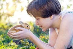 Girl and rabbit. On the lawn girl holds a small rabbit in the palms of her hand. Easter stock photography