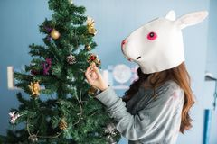 Girl with rabbit mask decorated Xmas tree. Cute woman with funny rabbit mask decorate small gift box on Christmas tree to celebrate xmas holiday royalty free stock images