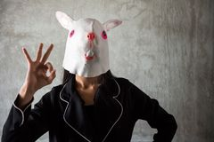 Girl with rabbit mask. Ok hand sign Stock Images