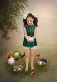 Girl and rabbits Stock Image