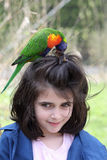 Girl and rainbow lorikeet Royalty Free Stock Photo