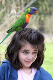 Girl and rainbow lorikeet Stock Images