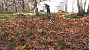 Girl rake autumn leaves stock video