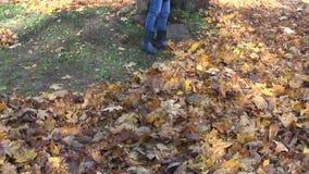 Girl rake dry leaves stock video