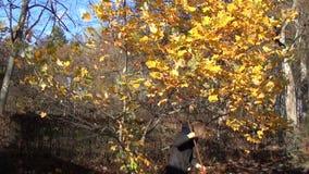 Girl rake leaves autumn stock video
