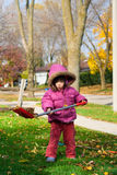 Girl raking leaves. Young girl raking leaves during an autumn morning stock photography