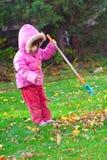 Girl raking leaves. Young girl raking leaves during an autumn morning Royalty Free Stock Photography