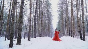 Girl and raven frozen under the snow in the forest stock footage
