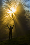 Girl in the rays of light Royalty Free Stock Photos