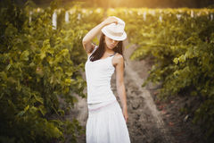 Girl in the rays of sun on the vineyard Stock Photo