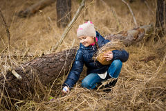 Girl reaching for Easter egg under log in forest Stock Images