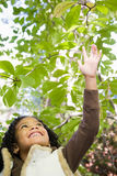 Girl reaching up to leaves Stock Photo