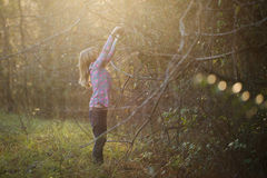 Girl reaching up in the woods. Young girl in the woods reaching up for a tree branch in yellow sunshine royalty free stock photo
