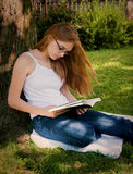 Girl reading Bible in Yard Stock Image