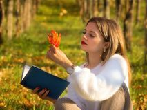 Girl reading a book sitting in the nature with a fallen leaf in Stock Photo