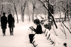 Girl reading in the snow, sitting on a bench Royalty Free Stock Photos