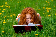 Girl is reading in spring meadow Stock Photography