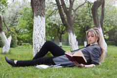 Girl reads a book Stock Image