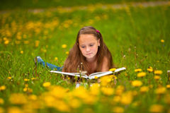 A girl reads a book in the meadow. Stock Images
