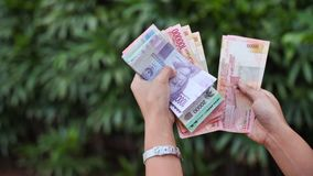 The girl recounts in the hands of Indonesian money. Indonesian rupee. The girl recounts in the hands of Indonesian money. Indonesian rupee stock video