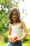 Girl with red apples Stock Photography