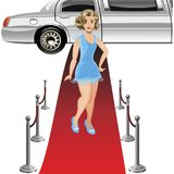 Girl on the red carpet. Vector illustration Royalty Free Stock Images