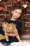 Girl with a red cat Stock Image