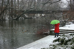 Girl in a red coat by the River. Girl in a red coat with green umbrella in the snow by a river with ducks and a bridge Royalty Free Stock Photos