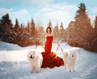 The girl in a red dress with dogs. In winter forest Royalty Free Stock Image