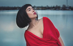 Girl in a red dress Royalty Free Stock Photo